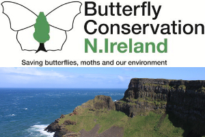 Butterfly walk along the North Coast from the Giant's Causeway @ Giant's Causeway Visitor Centre Carpark 3 | United Kingdom